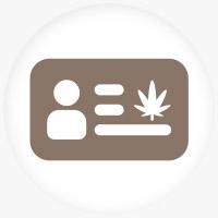 Medical Marijuana Lawyer Website Service